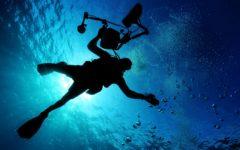 ダイビング好きにはたまらない!メキシコ・セノーテの魅力と穴場スポットを紹介